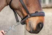LeMieux Pro-Safe Chain Controller Headcollar,Black,All Sizes,Padded Head & Nose