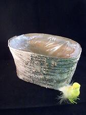 Birkenschale Oval - Übertopf - Pflanzschale - Naturprodukt - 20 x 12 x11 cm Vase