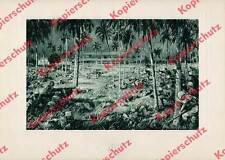 Martin Frost Schlacht bei Tanga Schutztruppe DOA Lettow-Vorbeck Askari Sikh 1914
