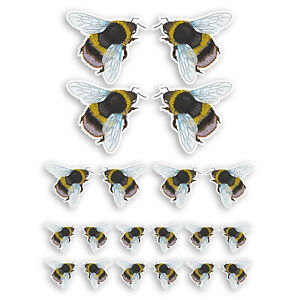 Cute Bumble Bee Vinyl Stickers - Bees Insect Kids Science Nature Sticker #34609