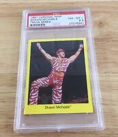Shawn Michaels 1997 Wwf Cardinal Card Psa 8.5 Wwe