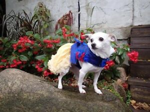 Snow White Princess Dog Costume Gown Dress Harness
