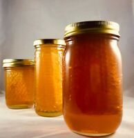Honeycomb Florida Wildflower Full Comb Honey 1.5 Lb 24 Fl oz