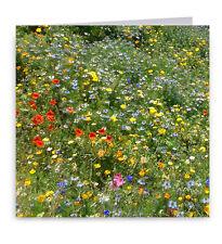 Wildflower Meadow Greeting Card - Flowers
