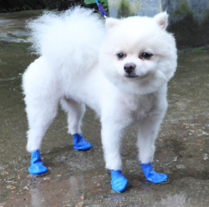 Dog Rubber Waterproof Boots | Dog Balloon Shoes | Paw Protection | 8-count, Blue