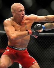 UFC MMA GSP GEORGE ST PIERRE Mixed Martial Arts Glossy 8x10 Photo Print Poster