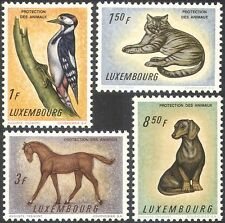 Luxembourg 1961 Woodpecker/Horse/Dog/Cat/Animals/Birds/Nature 4v set (n42321)