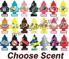 Little Trees Hanging Air Freshener Choose Scent Car Truck RV Home Office 6/10/24
