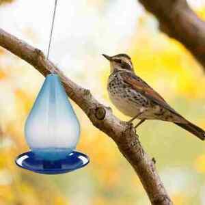Hummingbird Pet Feeder with Hole Feeding Birds Easy DE A6U9
