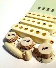 Aged Parts Set Mint Green GuitarSlinger Parts Fits To Strat ®