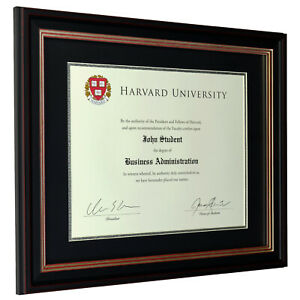 11x14 Document Frame with Double Mat - Black/Silver