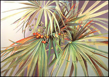 "Ken Weaver ""Palmetto"" Signed Numbered Offset Lithograph Art Print MAKE AN OFFER!"