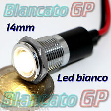 SPIA CON LED 12V DC BIANCO 14mm CON CORPO FLAT IN METALLO CROMATO IP67 lampada