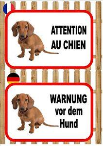 Dachshund Dog Beware of the Dog Sign ATTENTION AU CHIEN  WARNUNG VOR DEM HUND
