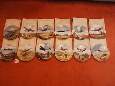 Royal Doulton Heroes Of The Sky Ww2 Bone China Collector Plane Plates Set Of 12