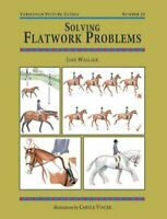 Solving Flatwork Problems (Threshold Picture Guides) By Jane Wallace
