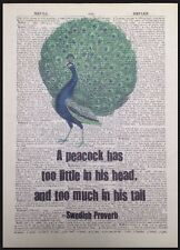 Vintage Peacock Bird Quote Print Dictionary Page Wall Art Picture Funny Animal
