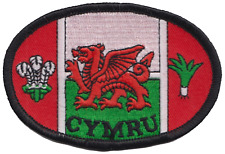 Wales Welsh Dragon Cymru Flag Oval Embroidered Patch Badge