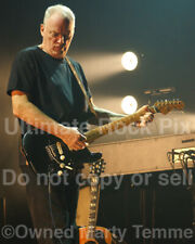 David Gilmour Photo Pink Floyd 8x10 Concert Photo by Marty Temme Black Strat 1C