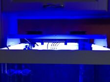 Plafoniera Led Acquario Dolce 150 Cm : Plafoniera led acquario in vendita ebay