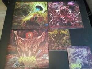 Slam Death Metal Vinyl LP/EP Packet - Sammlung Traumatomy Epicardiectomy Pighead