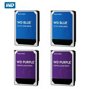 WD 1TB 2T 3T 4TB HDD Blue PC Purple Surveillance Hard Drive Western Digital 3.5""
