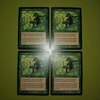 Treetop Scout x4 - Scourge - Magic the Gathering MTG 4x Playset