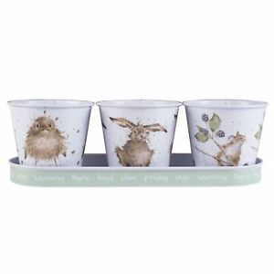 Set of 3 Wrendale Design Herb Pots and Tray – The Country Set Bird Hare Mouse