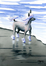 Chinese Crested at the Beach Dog Watercolor Art Print 11 X 14 Large Signed Djr
