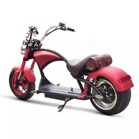 SoverSky Elf Citycoco Electric Harley Scooter M1 60V 20A / 3000W motorbike