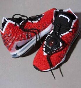 *** Nike LeBron Xvii  Basketball shoes*** Men's Sz10/Ladies Sz11/ Eur44 ***