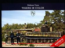 TIGERS IN COLOR BY WALDEMAR TROJCA
