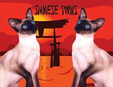 Siamese Cats Fridge Magnet, Siamese Twins