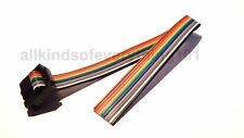 ** 10 WAY RAINBOW RIBBON CABLE WITH IDC FEMALE HEADER CONNECTOR - 20 cm LONG **
