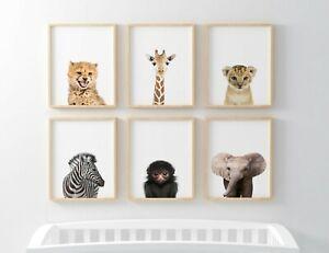 Jungle | Safari | Woodland Baby Animal Nursery Prints - Childrens Bedroom Decor