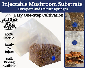 One Step Mushroom Grow Bag Direct From Injection Substrate