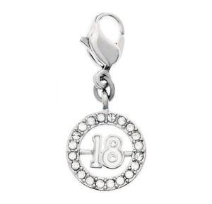 Swarovski Clear Crystal Jewelry 18 Charm Rhodium -1109728 New