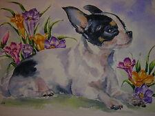 ACEO Chihuahua dog animal Crocus flower Spring Garden landscape print