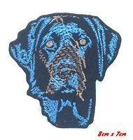 Blue Labrador animal Iron on Sew on Embroidered Patch #644