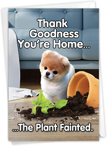 Boo's Plant Fainted - Funny Dog Birthday Greeting Card with Envelope 4.63 x 6.75