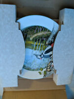 Royal Doulton Daulton china collectable plate the woodland woodpecker TC121018RR