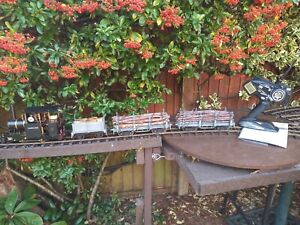 Regner Lumberjack 16mm Dual Gauge Live Steam Locomotive Bundle