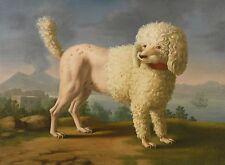Lady Hamilton's Poodle Codina, Neapolitan School  8x6 inch Photographic Reprint