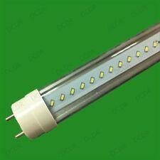 Ampoules tubes fluorescents blancs pour la maison G13