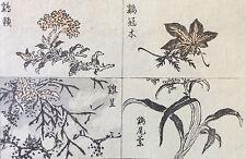 Estampe japonaise Kono Bairei Japon vers 1885 Flore Fleurs Japan Asie Asia