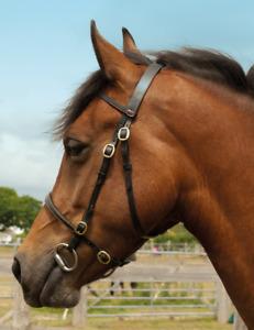Windsor Leather In Hand Show Bridle - Black or Havana - Shetland Small Pony Cob