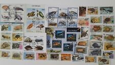 50 Different Turtle Stamps Collection