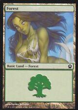 1x Altered Art Forest : Custom Basic Land non-foil MTG card