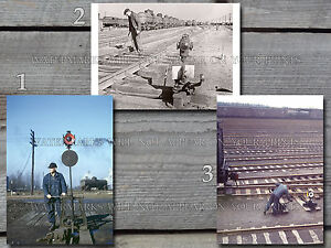 Railroad switchmen throw switch clean switches IL IN yard 1940s photos lot