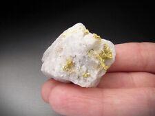 Native Gold Crystals on Matrix, California